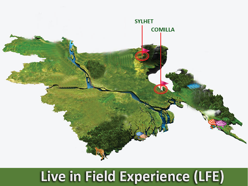 Live in Field Experience